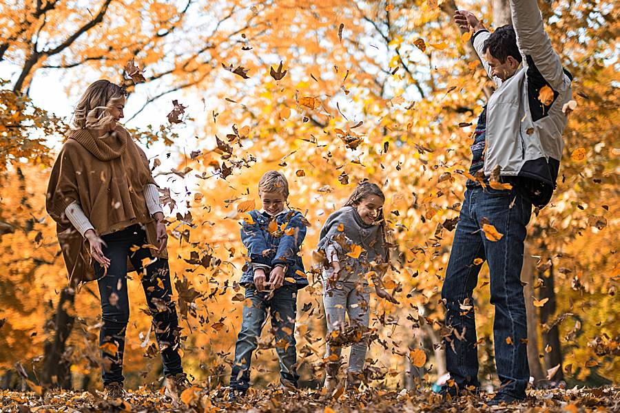 Playful family throwing autumn leaves in the air