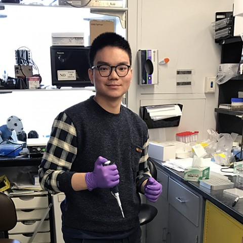 Alfred Chin at work in the Solomon Snyder lab