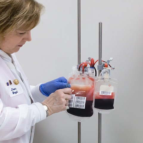 Two plastic-sealed packets of blood hang from a hook while a doctor opens one of the packets